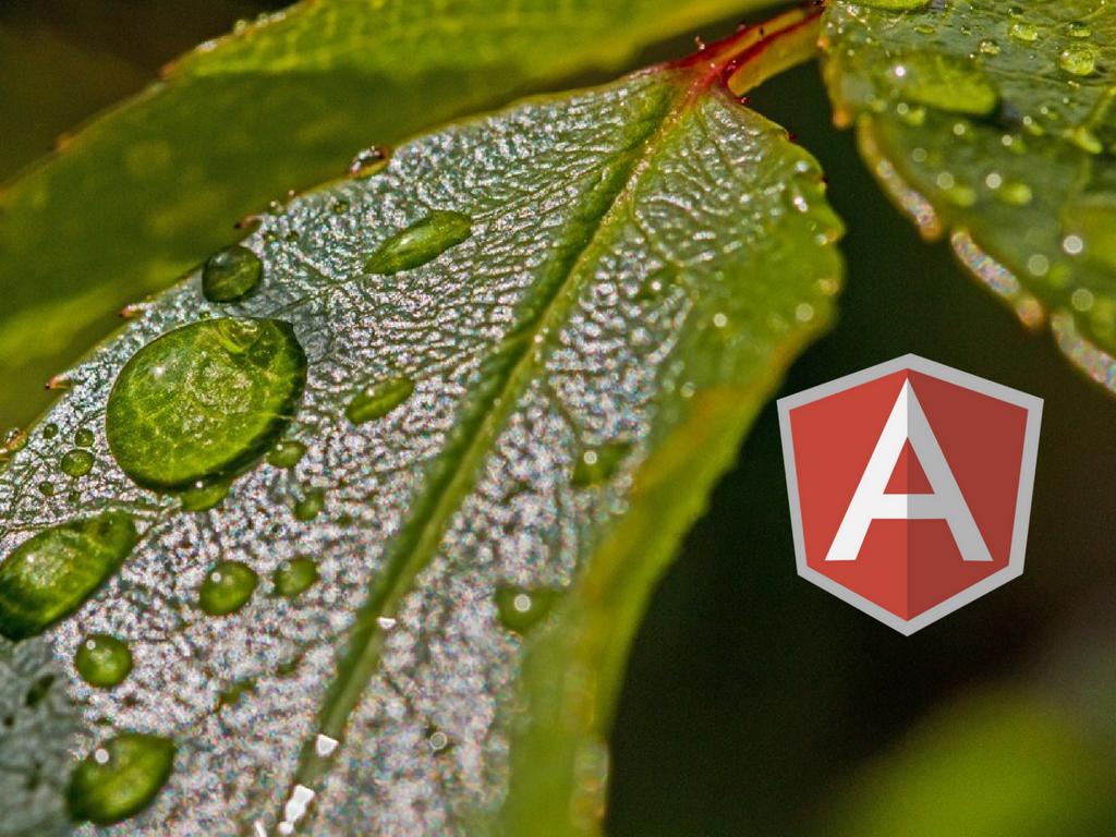 angularjs JavaScript frameworks