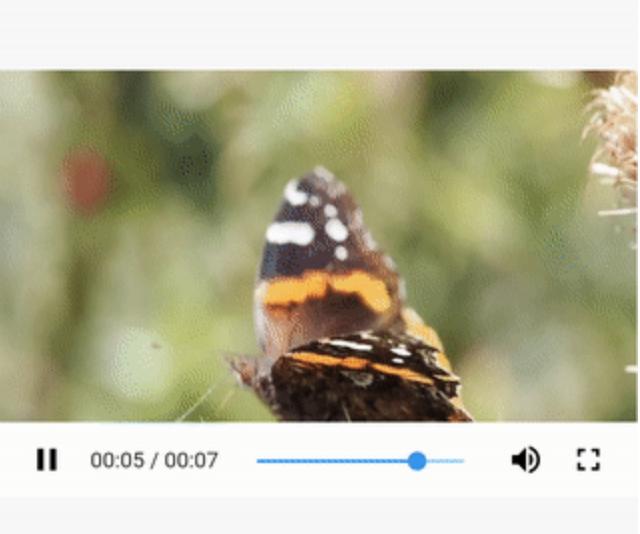 Flutter Media plugins